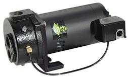 Eco Flo EFCWJ10 1 HP Water Well Pump