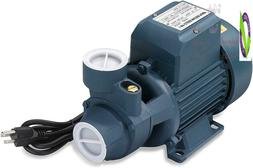 Neiko 50639 Electric Centrifugal Clear Water Pump, 1