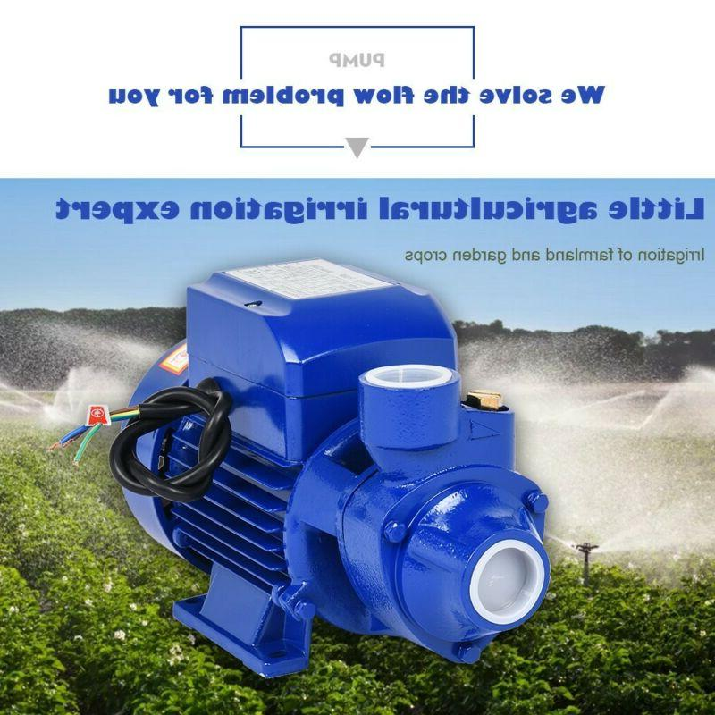 Water Pump Electric Clear Centrifugal Diesel Pond Pool