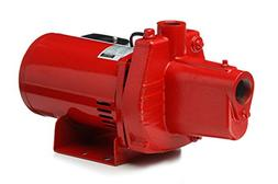 Red Lion RJS-50 602006 1/2-HP 12-GPM Thermoplastic Shallow W